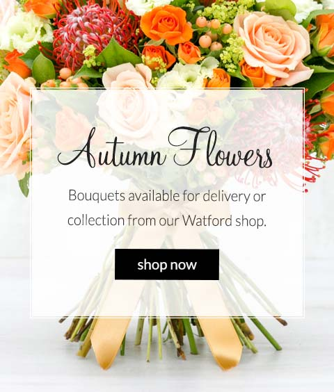 order flowers: autumn bouquets available for delivery or collection from our watford shop