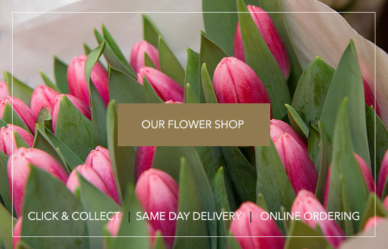 our flower shop