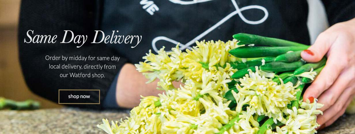 same day delivery: order by midday for same day local delivery, direct from our watford shop