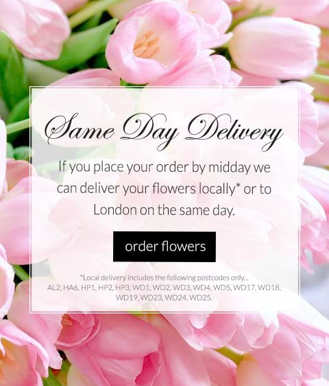 same day delivery if ordered by midday